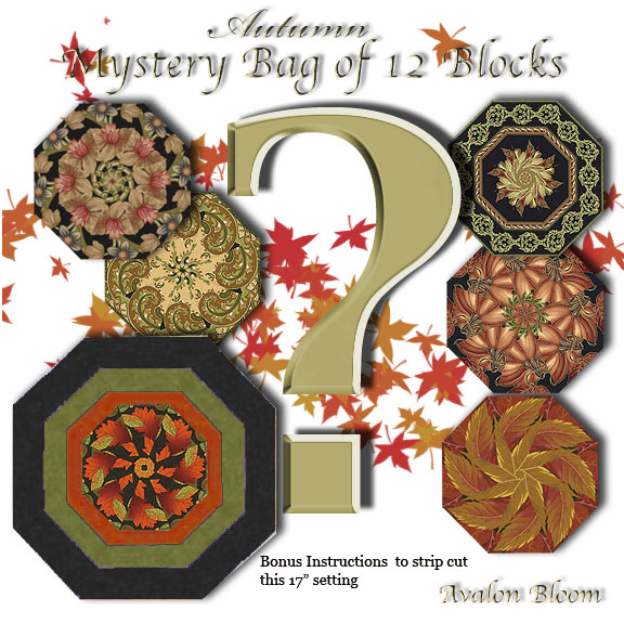 Autumn Mystery Bag of 12 Kaleidoscope Quilt blocks