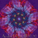 Kaffe Fassett Lotus Leaf Kaleidoscope Quilt Block Kit