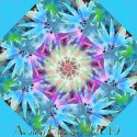 Awakening Kaleidoscope Quilt Block Kit