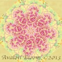 Kaffe Fassett Brassica Yellow Kaleidoscope Quilt Block Kit